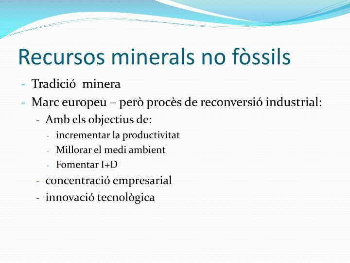 Recursos minerals no fssils