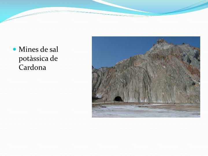 Mines de sal potssica de Cardona