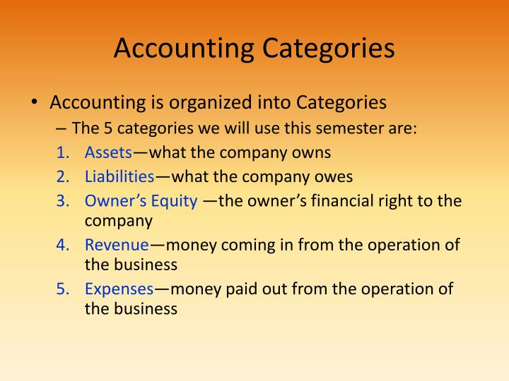 Accounting categories