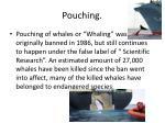 pouching