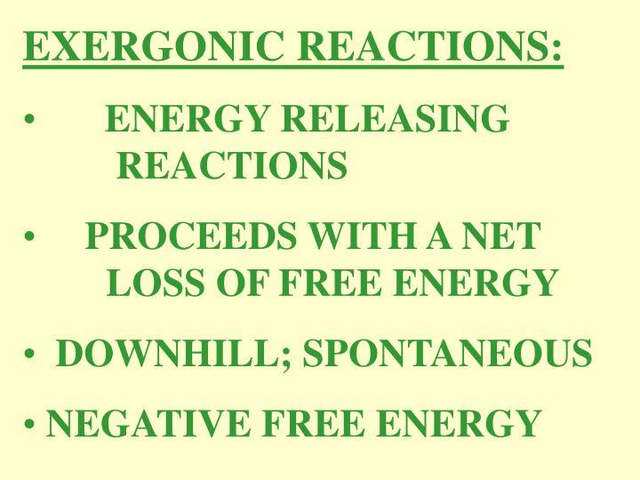EXERGONIC REACTIONS: