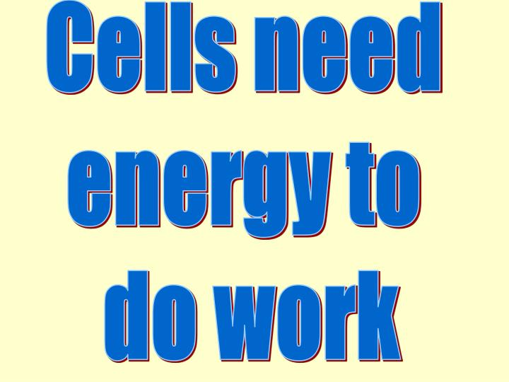 Cells need