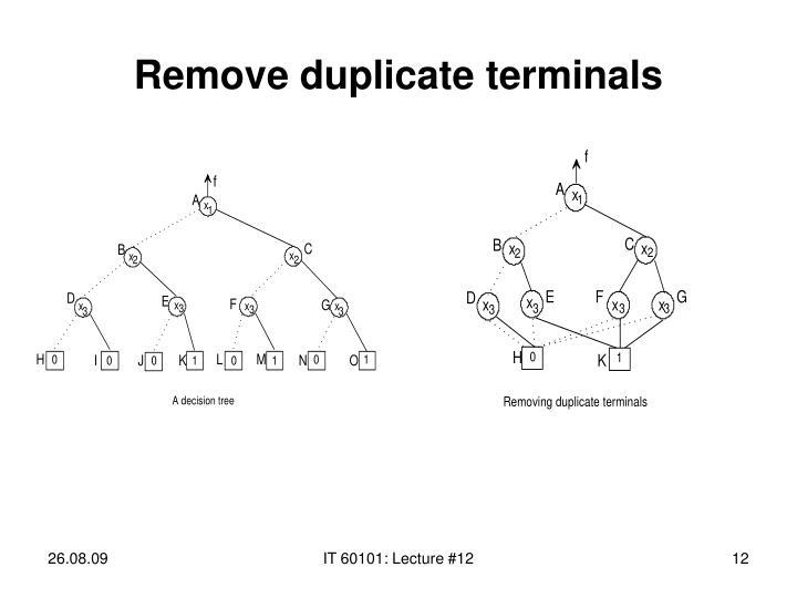 Remove duplicate terminals