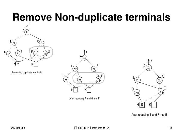 Remove Non-duplicate terminals