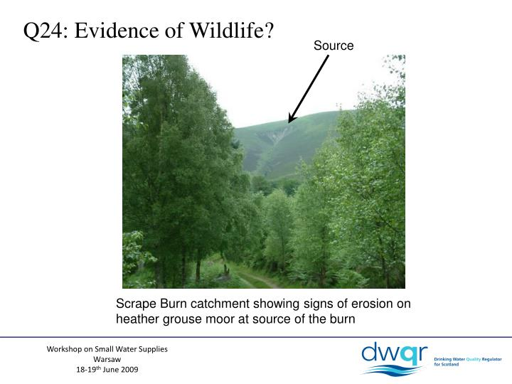 Q24: Evidence of Wildlife?