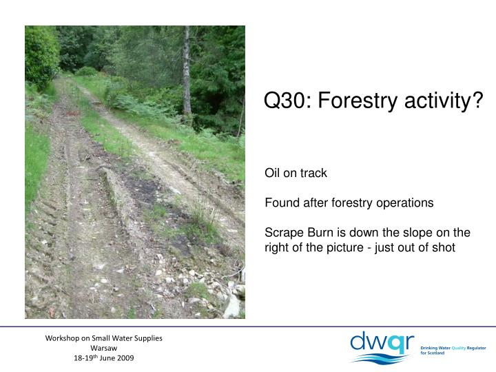 Q30: Forestry activity?