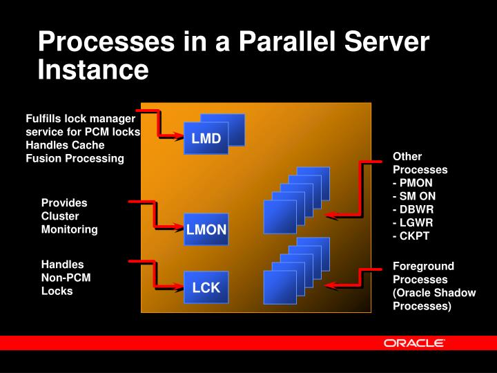 Processes in a Parallel Server Instance