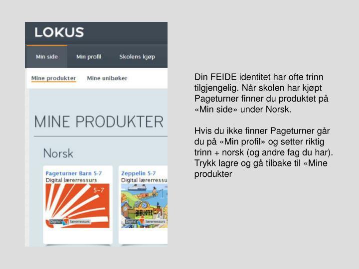 Din FEIDE identitet har ofte trinn tilgjengelig. Når skolen har kjøpt Pageturner finner du produktet på «Min side» under Norsk.