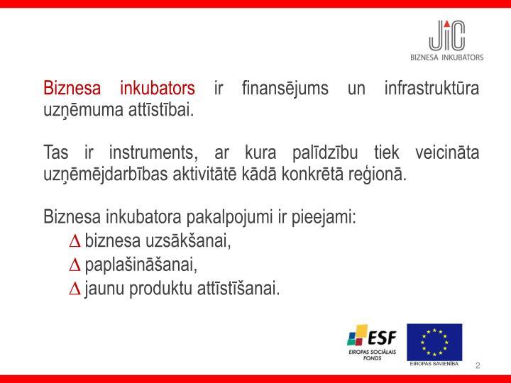 Biznesa inkubators