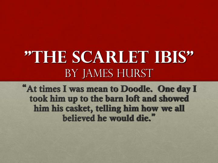 """a review of james hursts the scarlet ibis After reading the short story """"the scarlet ibis"""" by james hurst, students will   pass out the graphic organizer and complete section i this will be a review of."""