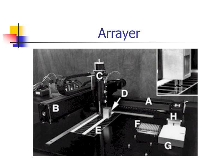 Arrayer