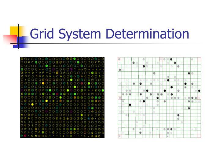 Grid System Determination