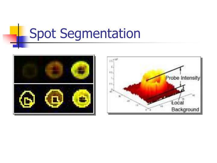 Spot Segmentation