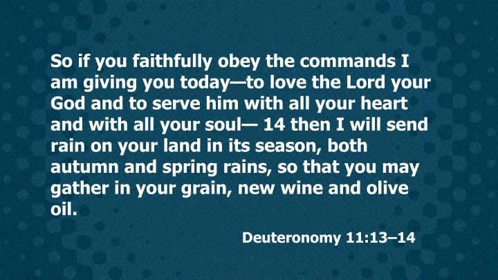 So if you faithfully obey the commands I am giving you today—to love the Lord your God and to serve him with all your heart and with all your soul— 14 then I will send rain on your land in its season, both autumn and spring rains, so that you may gather in your grain, new wine and olive oil.
