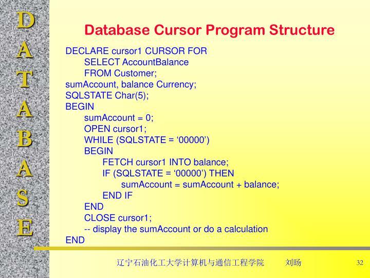 Database Cursor Program Structure