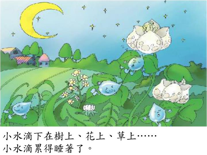 小水滴下在樹上、花上、草上