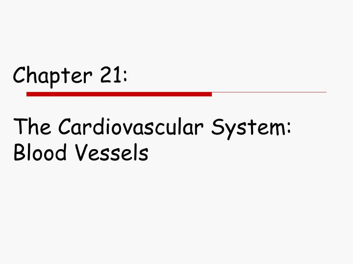 Chapter 21 the cardiovascular system blood vessels
