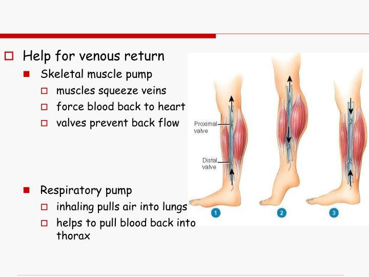 Help for venous return