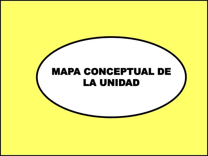 MAPA CONCEPTUAL DE
