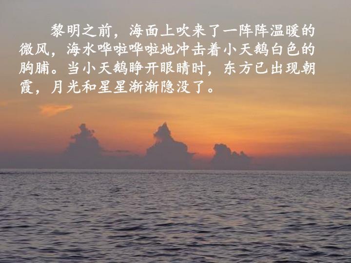 黎明之前,海面上吹来了一阵阵温暖的微风,海水哗啦哗啦地冲击着小天鹅白色的胸脯。当小天鹅睁开眼睛时,东方已出现朝霞,月光和星星渐渐隐没了。
