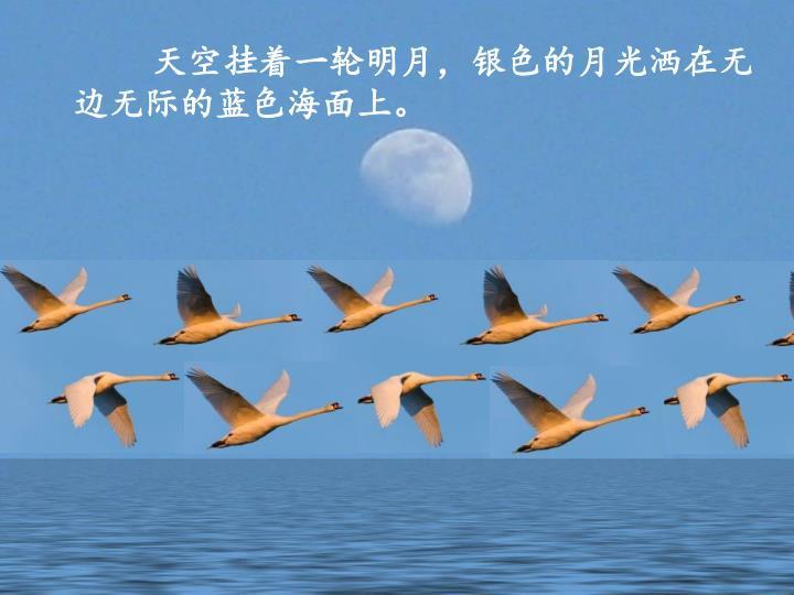 天空挂着一轮明月,银色的月光洒在无边无际的蓝色海面上。