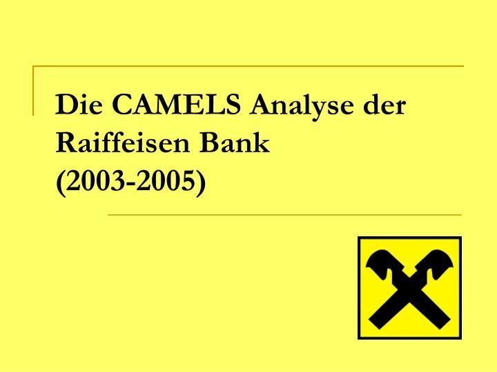 Die CAMELS Analyse der
