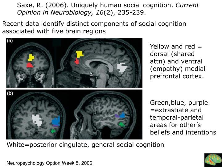 Saxe, R. (2006). Uniquely human social cognition.