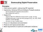 downscaling digital preservation2