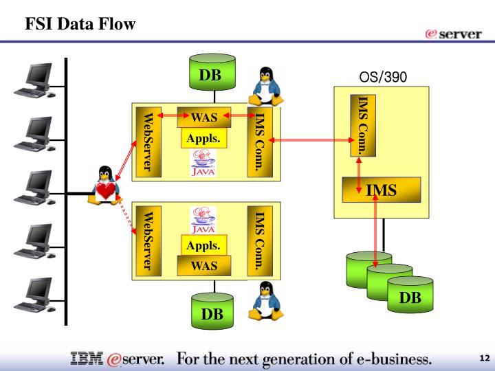FSI Data Flow