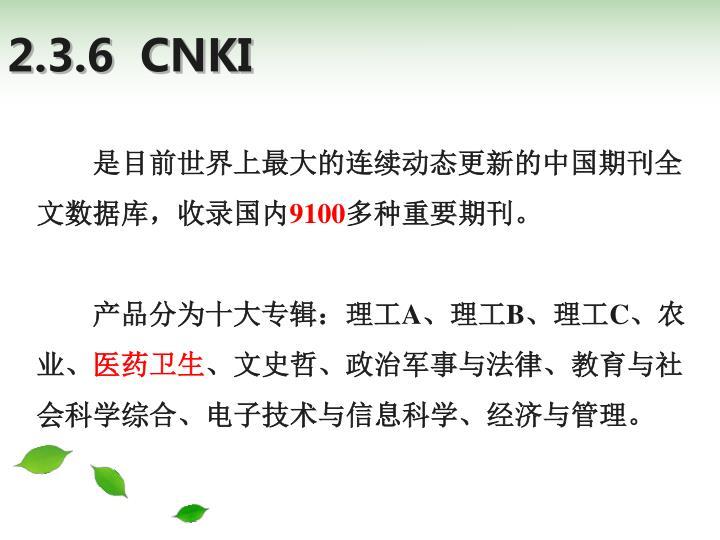 2.3.6  CNKI