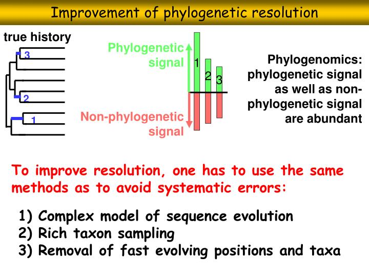 Improvement of phylogenetic resolution
