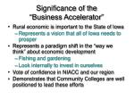 significance of the business accelerator