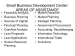 small business development center areas of assistance