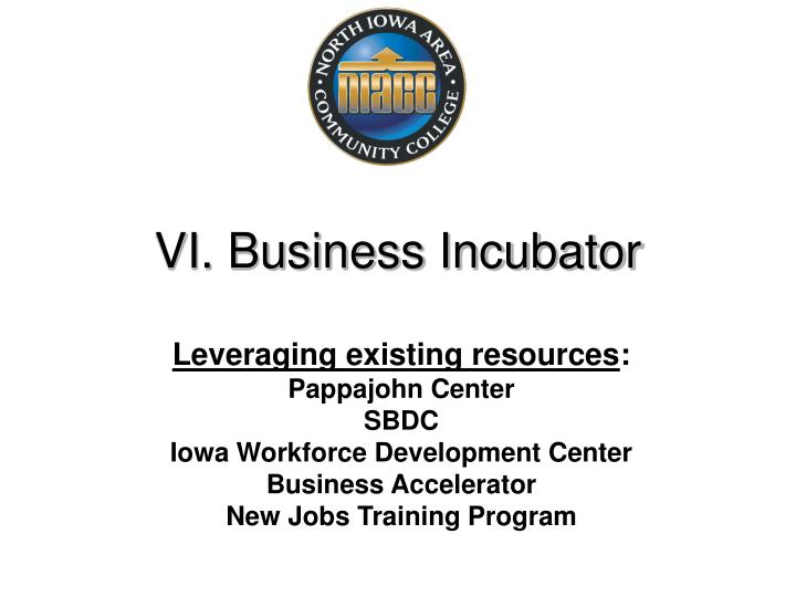 VI. Business Incubator