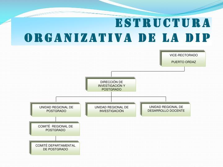 Estructura organizativa de la