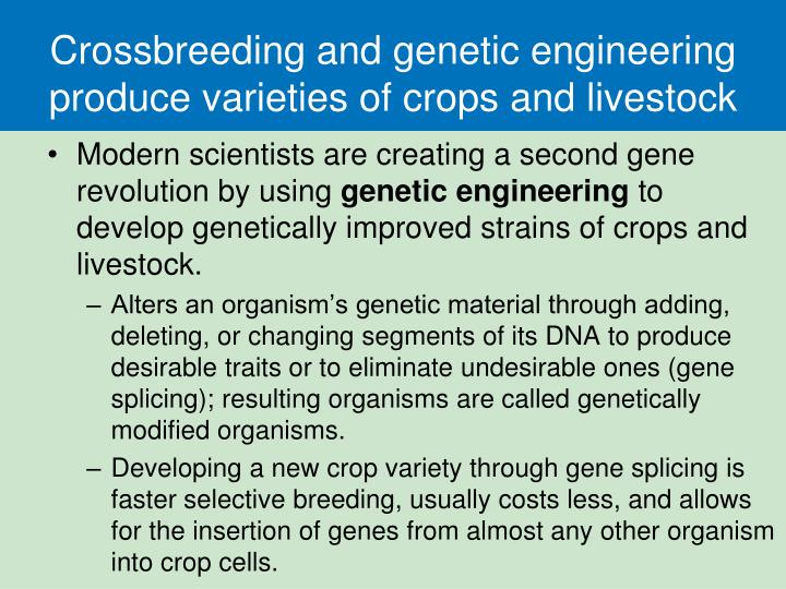 genetic engineering and developing countries essay