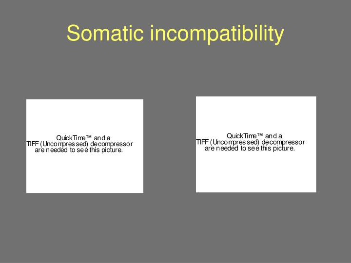 Somatic incompatibility