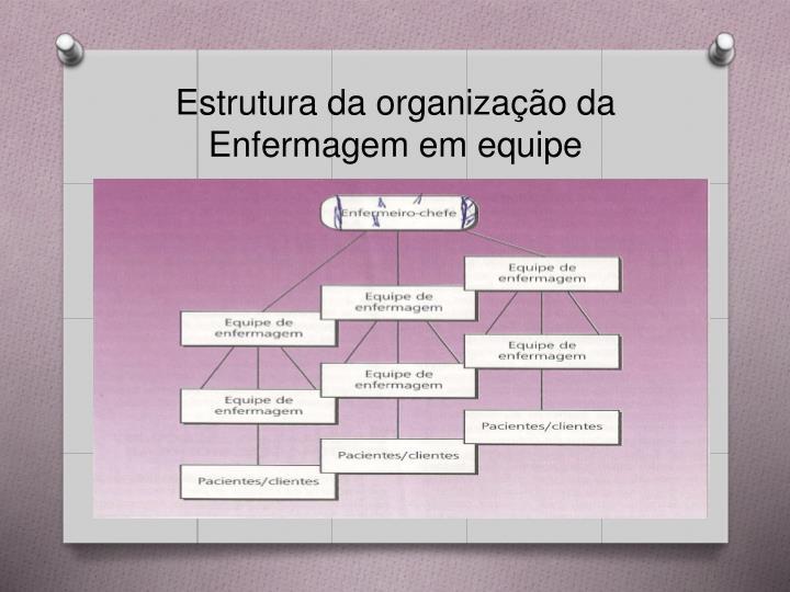 Estrutura da organização da Enfermagem em equipe