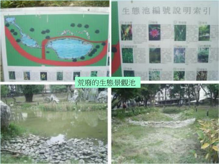 荒廢的生態景觀池