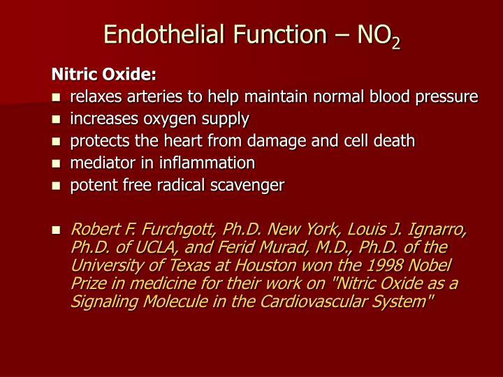 Endothelial Function – NO