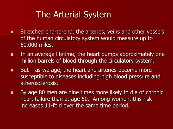 The Arterial System