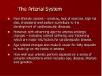 the arterial system1