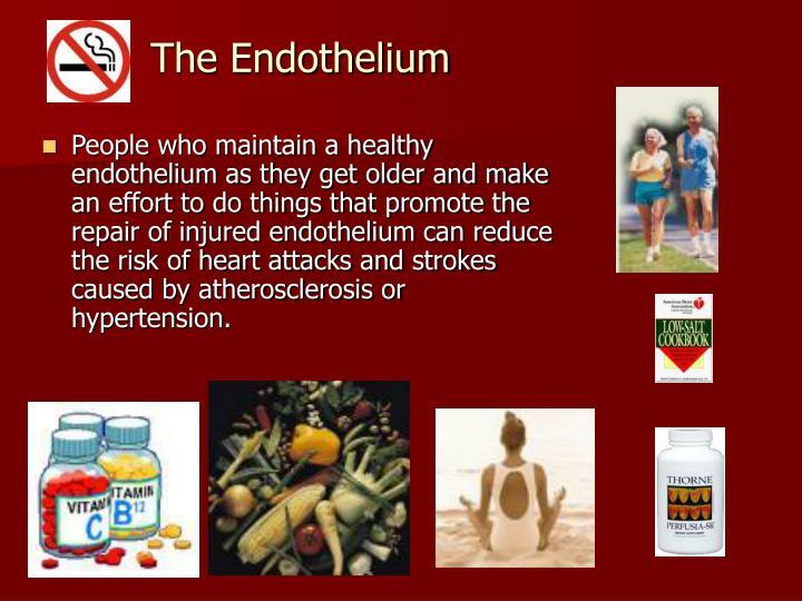 The Endothelium