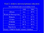 goal 2 achieve universal primary education3