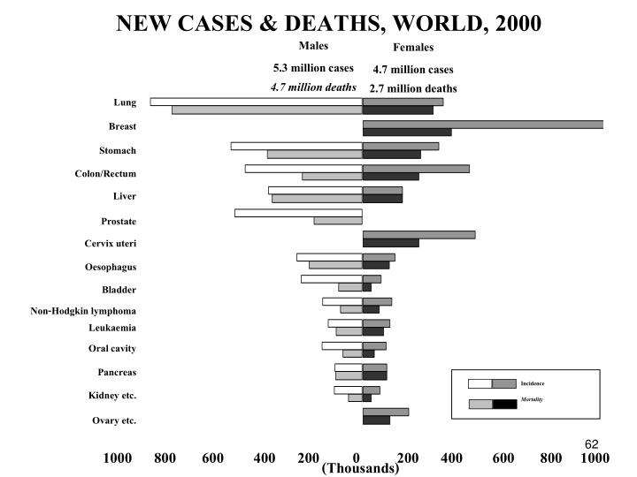 NEW CASES & DEATHS, WORLD, 2000