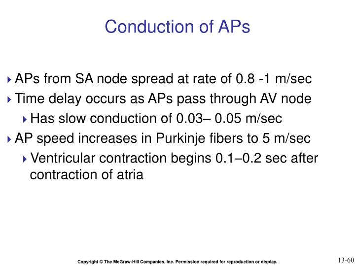 Conduction of APs