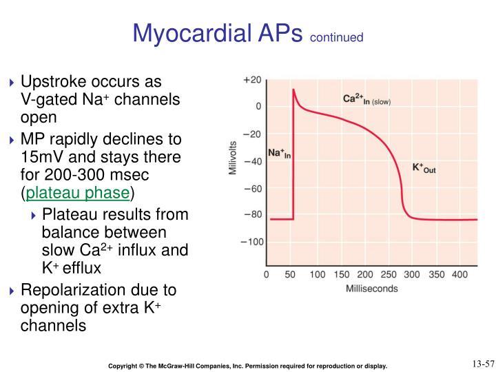 Myocardial APs