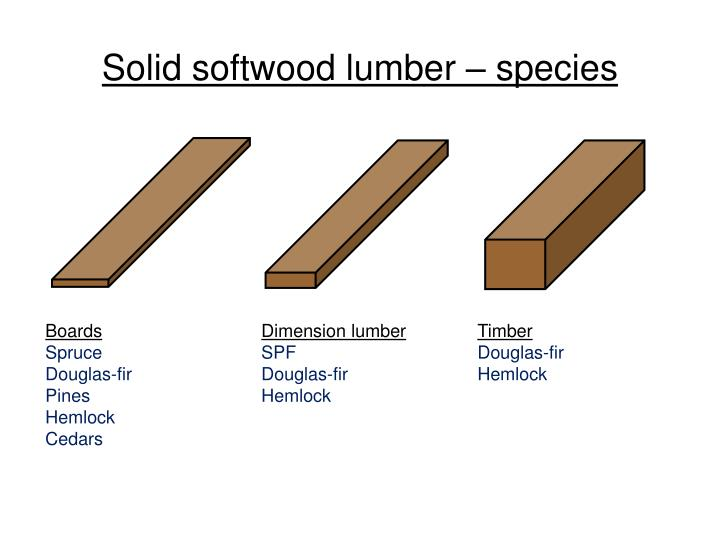 Solid softwood lumber – species