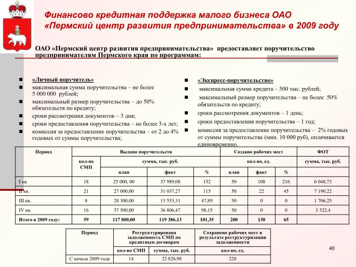 Финансово кредитная поддержка малого бизнеса ОАО «Пермский центр развития предпринимательства» в 2009 году