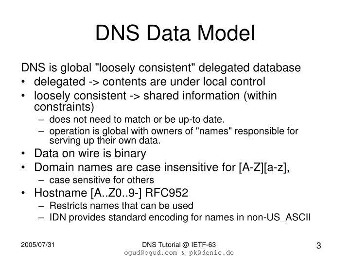DNS Data Model